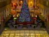 Atlanta plaza Christmas tree