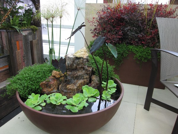 Residential Interior Landscape and Container Gardens | PFI ...