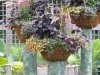 ornamental outdoor floral containers